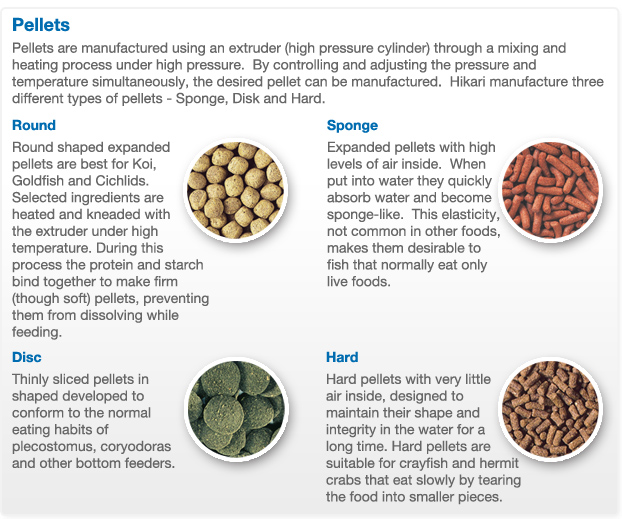 food-types-pellets.jpg